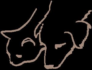 sei-hund-und-katze-h420