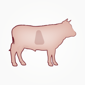 seitz-barf-symbole-24